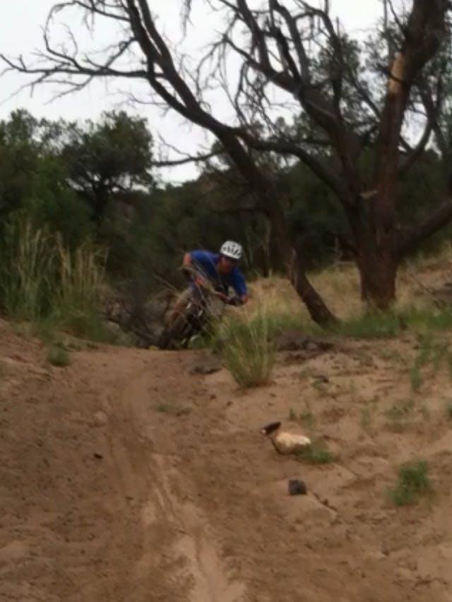 Cycling Expert Matt Wood