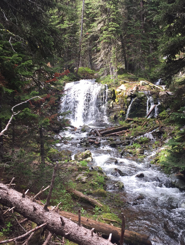 Camping & Hiking Expert Beau Garcia