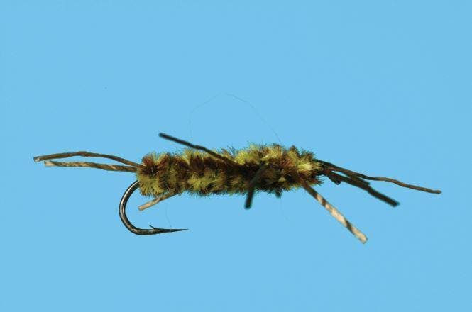 Stonefly Nymph - Pat's Rubber Leg by Solitude, Olive/Brown / #8