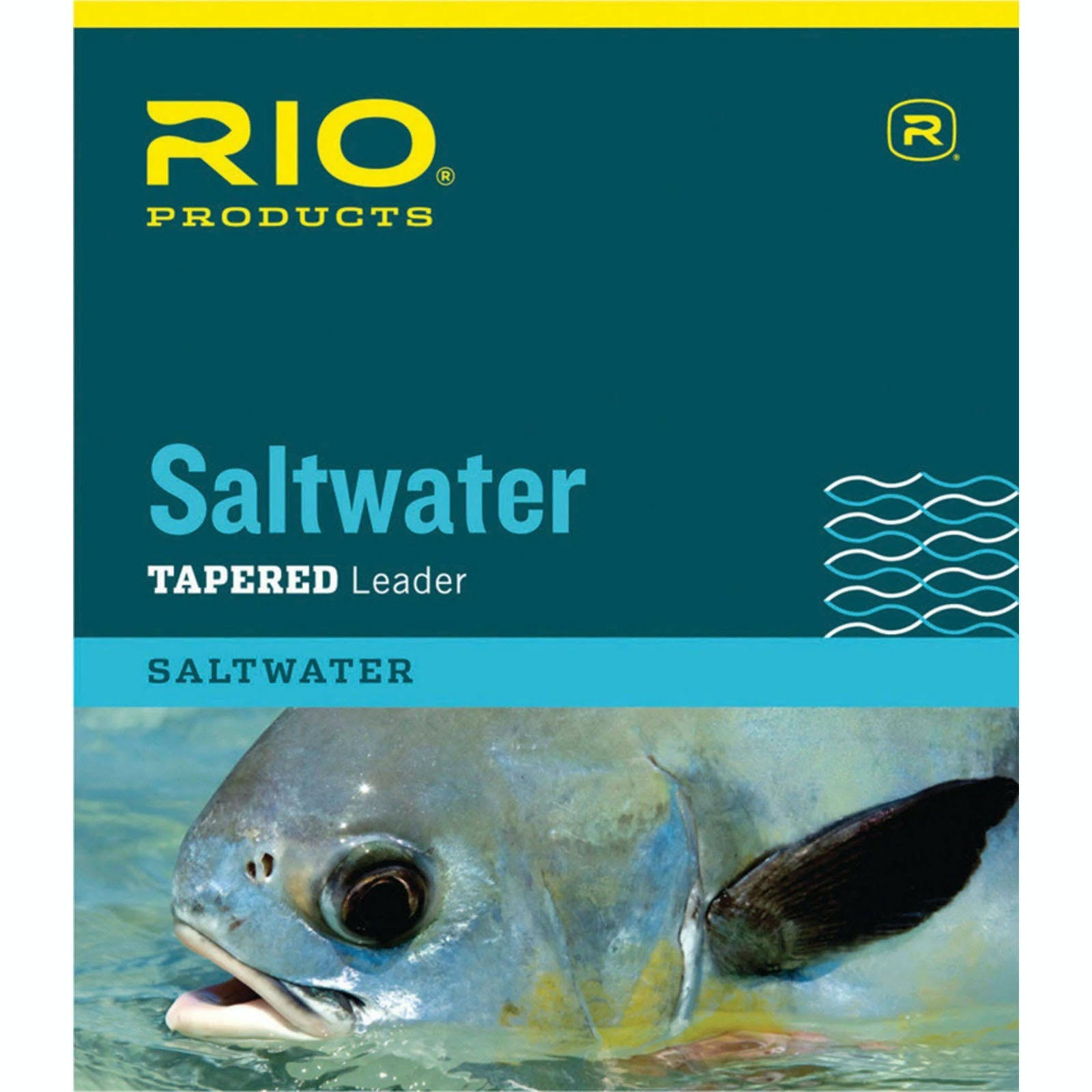 Rio Saltwater Leader 10 ft. 8 lb.