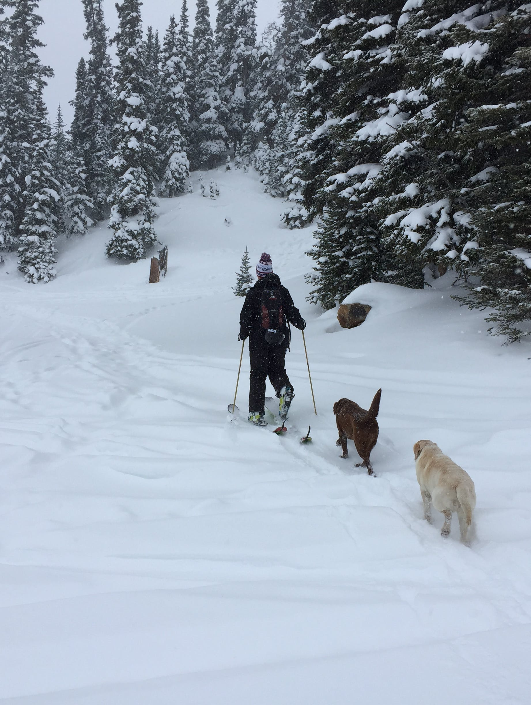 Winter Sports Expert Mitch Lukes