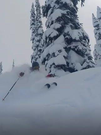 Winter Sports Expert Matt Stevens