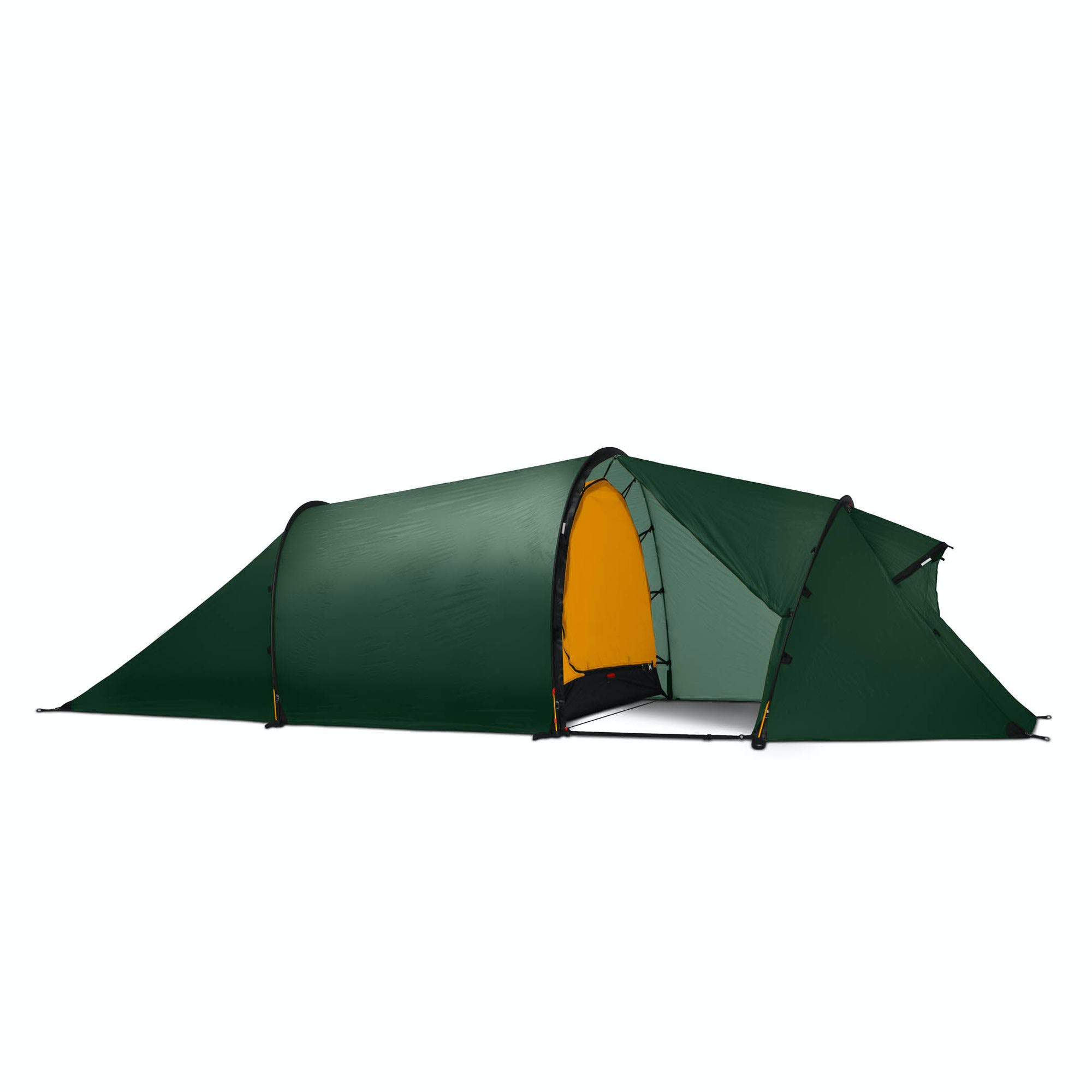 Hilleberg Nallo 3 GT Tent (Green)